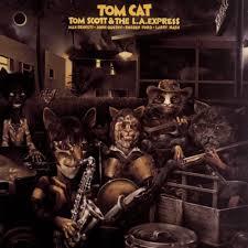 cat photo album tom the l a express tom cat