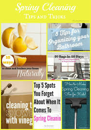 Spring Cleaning Tips Cleaning Tips And Tricks