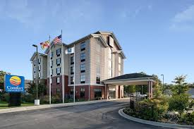 Comfort Suites Lexington Sc Book Comfort Inn U0026 Suites In Lexington Park Hotels Com