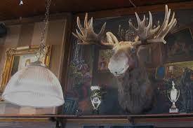 Moose Head Decor Interesting Decor Picture Of Cactus Club Cafe North Vancouver