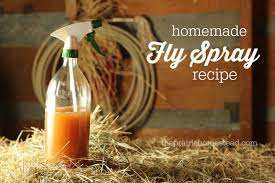Backyard Fly Repellent Homemade Fly Spray Recipe The Prairie Homestead