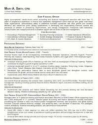 resume sample 21 cfo finance executive resume career resumes