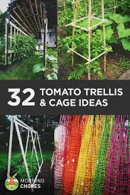32 diy tomato trellis u0026 cage ideas for healthy tomatoes