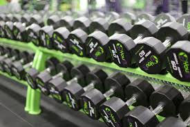 barbell and dumbbell workouts for beginners youniverse