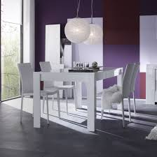 Chaise Salle A Manger Occasion by Salle Manger Moderne Occasion Inspirations Avec Chaise De Salle A
