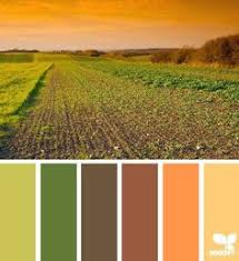 10 color palettes hex codes perfect autumn fall