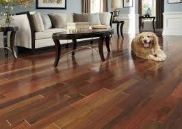 walnut flooring in ottawa wood floors hardwood flooring ottawa