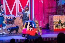 Comedy Barn In Pigeon Forge Tennessee Comedy Barn Pigeon Forge Review Photos U0026 Prices