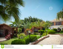 bungalow houses egypt north africa stock photo image 45952545