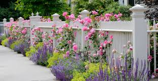 Tips For Curb Appeal - great curb appeal charlotte home seller tips south charlotte