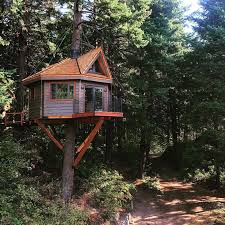 file tree house jpg treehouse treehouse resort and spa jpg treehouse bgbc co