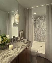 Master Bathroom Remodeling Ideas Colors 941 Best Bathroom Remodel Images On Pinterest Paint Colours