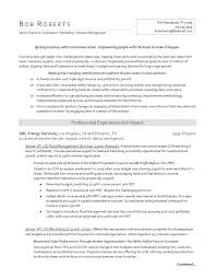 sample resume for it sample resume for oil and gas industry sioncoltd com ideas collection sample resume for oil and gas industry with additional letter