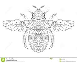 bumblebee coloring book for adults vector stock vector image