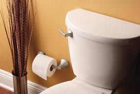 strong man toilet paper holder moen yb5108bn voss pivoting toilet paper holder brushed nickel