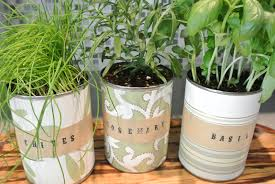 modern indoor gardening design ideas 18 awesome indoor herb