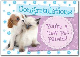 congrats on your new card veterinary congratulations cards smartpractice veterinary