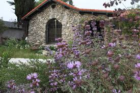 native plant gardens garden 2 in sun valley theodore payne native plant garden tour