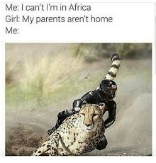 Africa Meme - me i can t i m in africa girl my parents aren t home me africa
