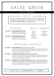 Resume Templates For Openoffice Professional Cv Efficient Resume Mycvfactory