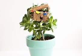 hello wonderful diy succulent plant mini tree house can make