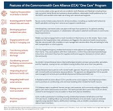 how to write a paper on a case study the commonwealth care alliance features