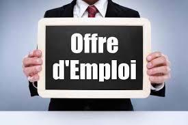 emploi bureau veritas offre d emploi bureau veritas français du monde adfe hambourg