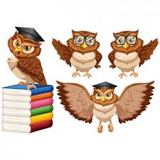 owl vectors photos and psd files free download