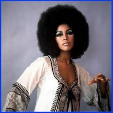 african american 70 s hairstyles for women 219 best afros afro combs images on pinterest black beauty
