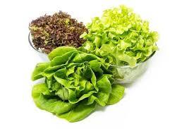 alimentazione ferro basso ematocrito basso ed emoglobina bassa