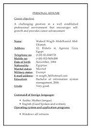 waleed cv new copy exles of resumes copy a professional resume ideas 2765712
