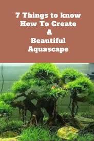 japanese aquascape 1260 best akváriumok images on pinterest plants aquarium and