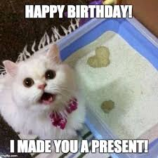 Happy Kitten Meme - happy birthday i made you a present imgflip