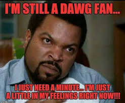 Meme Dawg - 303 best go dawgs images on pinterest collage football georgia