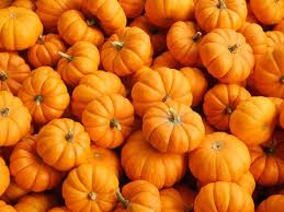 small pumpkins fall children s ministry lesson pumpkins children s ministry deals