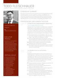 business development executive resume todd fleischhauer resume strategic sales and business development e