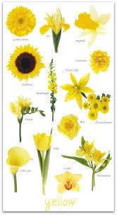 yellow flowers yellow wedding flowers theory yellow wedding