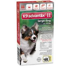 6 month australian shepherd weight 6 month k9 advantix ii blue for extra large dogs over 55 lbs