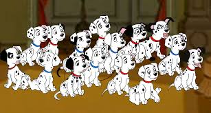101 dalmatians explains college student perfectly