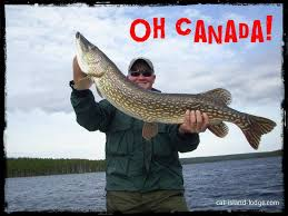 Pike Meme - trophy northern pike caught on a canadian fly in fishing trip with