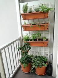 Patio Vegetable Garden Ideas Balcony Vegetable Garden