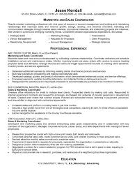 Sample Career Goals For Resume by Curriculum Vitae Application Letter Sample Email Cover Letter