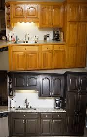 Kitchen Cabinet Refinishing Kits Wunderbar Kitchen Cabinets Diy Kits Brilliant Professional Looking