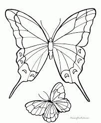 22 best printables butterflies images on pinterest eyes