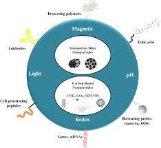 non metallic nanomaterials in cancer theranostics a review of