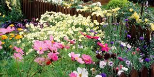 www housebeautiful thomas jefferson laidback gardener