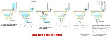 10 offset toilet dual flush cistern lid removal town square