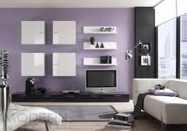 Color Combination Ideas For Living Room Wall Paint  Living - Combination colors for living room