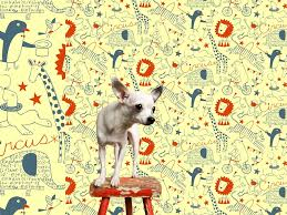 Wallpaper Designs For Kids Circus Interior Wallpaper Design By Loboloup United States
