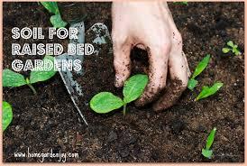 raised vegetable garden beds soil mix best idea garden